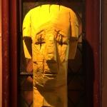 yellow-head-2